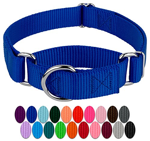 Country Brook Design – Martingale Heavyduty Nylon Dog Collar – Royal Blue – Medium