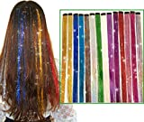 24 Pcs Glitter Hair Extensions Clip in Hair Extensions, 12 Different Colors Hair Tinsel Strands Colored Hairpieces Clip on in Hair Extensions Hair Tinsel Kit