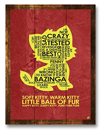 35 Big Bang Theory Gift Ideas The Ultimate Guide For 2021 Gifttable