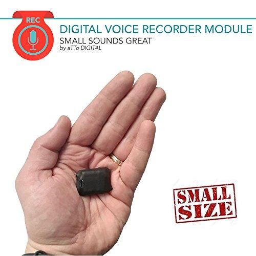 Mini Grabadora de Voz con Sensor Activado por Voz, Memoria Incorporada de 8GB para 572 Horas de Grabación, 20 horas Duración de la Batería