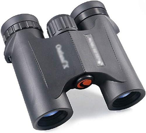 GJY Jumelles Jumelles compactes Jumelles pour Vision Nocturne des Adultes Jumelles de télescope extérieures imperméables pour Adultes Observation des Oiseaux 10  25 Multiples (Couleur   noir)