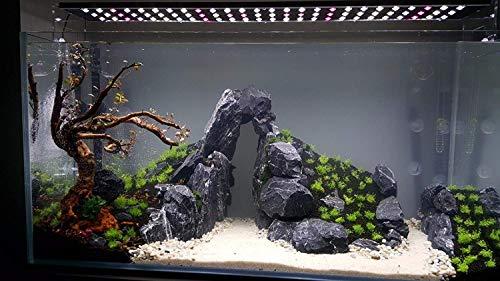 Natur Dunkel Grau Steine Aquarium Dark Gray 10Kg