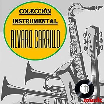 Alvaro Carrillo Colección Instrumental