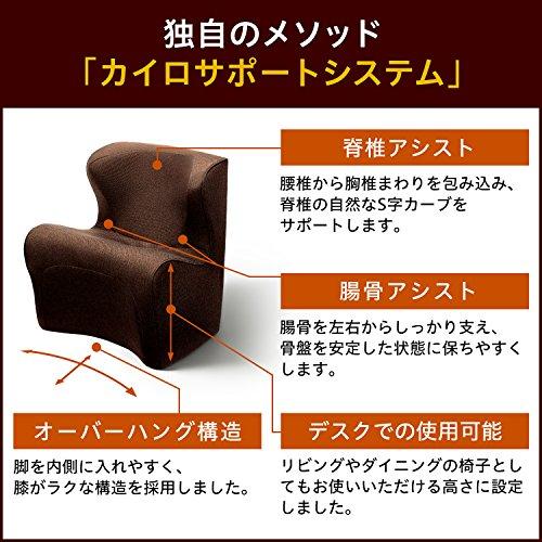 MTG(エムティージー)StyleDr.CHAIRPlus(スタイルドクターチェアプラス)E1044-A