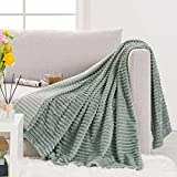 RECYCO Flannel Fleece Throw Blanket for Couch, Super Soft Microfiber Plush Blanket Throw, Fuzzy Cozy Luxury Blanket for All Seasons, 50 x 60 Inches, Sage Green
