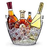 RERXN 8L Portaghiaccio Secchiello per Il Ghiaccio Secchio di Ghiaccio Secchiello per Champagne Secchiello per Il Ghiaccio Grande (trasparente)