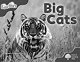 Oxford Reading Tree: Stage 4 (Pack A): More Fireflies: Big Cats