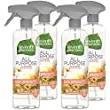 4-Pack Seventh Generation All Purpose Cleaner 23 oz