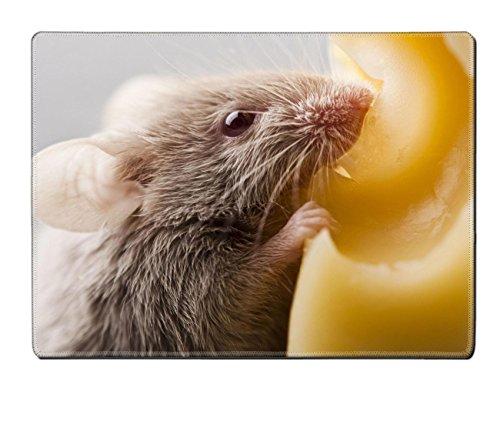 Goobull Liili tovaglietta Mouse Sull' Immagine Formaggio ID 5551724Personalizzato Resistente alle Macchie da Collezione Kitchen Table Top Desk Drink