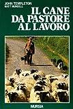 Il cane da pastore al lavoro. Cura e addestramento