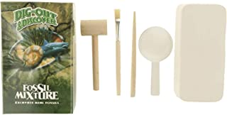 Flameer Set of Natural Real Mineral & Rock Dig Out Discover Geology Toy with Digging Tools Brush Magnifying Glass #B