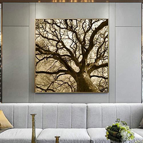 CUTMG Carteles e Impresiones Pintura de Arte en Lienzo Naturaleza Moderna Paisaje Árbol Gigante Árbol Viejo Imagen para Sala de Estar Decoración del hogar (50x50cm) Sin Marco