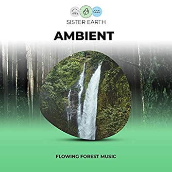 Flowing Ambient Forest Music