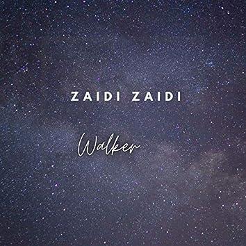 Zaidi Zaidi
