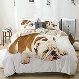 Juego de funda nórdica Bulldog beige, triste y cansado acostado Fotografía de animales de raza pura europea, juego de cama decorativo de 3 piezas con 2 fundas de almohada Fácil cuidado Anti-alérgico S