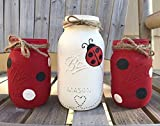 Ladybug Mason Jars/Ladybug Decor/Ladybug Centerpiece