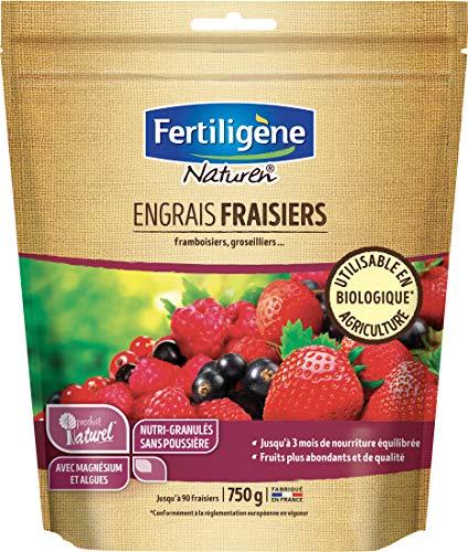 Naturen Engrais Fraisiers et Arbustes A Petits Fruits 750gr