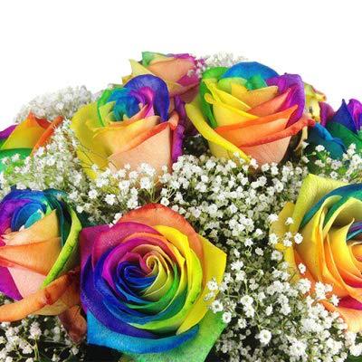 Bunter Blumenstrauß mit 10 Regenbogenrosen - Echte bunte Rosen - Das besondere Geschenk - Inkl. gratis Grußkarte!