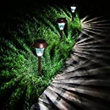 Enchanted Spaces Bronze Solar Path Light, Set of 6, with Glass Lens, Metal Ground Stake, and Extra-Bright LED for Garden, Lawn, Patio, Yard, Walkway, Driveway