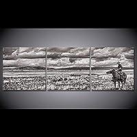 ファッション キャンバス絵画黒と白のカウボーイ乗馬壁の写真リビングルーム送料無料CU-1650B 40x40cmx3pcs