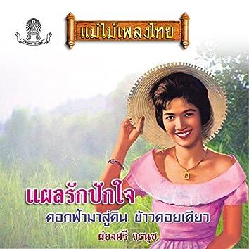 แม่ไม้เพลงไทย ชุด แผลรักปักใจ