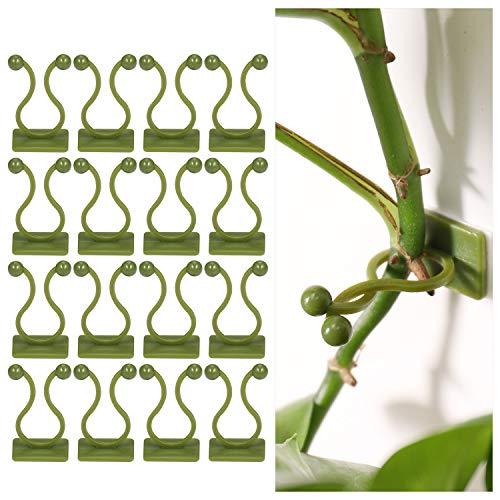 ZOCIPRO 100Stück Selbstklebende Pflanzenclips, Langlebige Wandbefestigung Ohne Bohren für Pflanzen, Geeignet für Erstellen von Pflanzenwänden, Pflanzenhaken für Kletterpflanzen