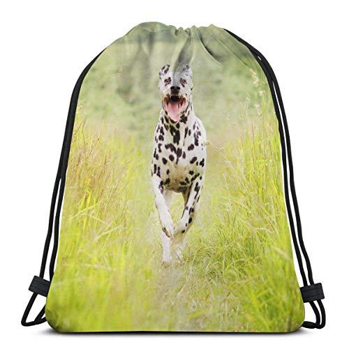 Dachshund perro jugando en la cama bolsas de hombro con cordón personalizado bolsa de gimnasio, mochila de viaje, gimnasio ligero para hombre y mujer, 16 x 14 pulgadas