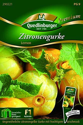 Zitronengurke, Lemon Quedlinburger Saatgut Samen 290221