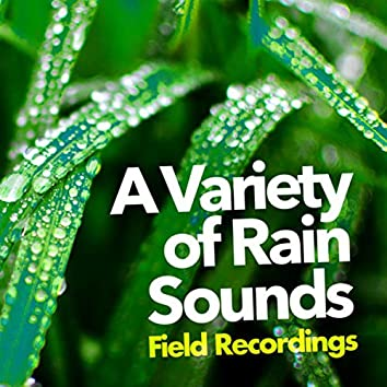A Variety of Rain Sounds