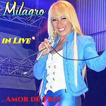 Amor de Tres (Live)