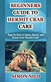 BEGINNERS GUIDE TO HERMIT CRAB CARE: Tips On How to Raise, Breed, and House Your Hermit Cr...