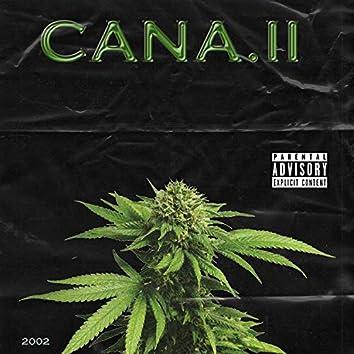 CANA.II