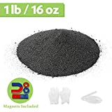 DAILYLIFE Magnet Iron Powder Filings 1 Pound Including 4 Magnets for Magnetic Field and Science Experiments
