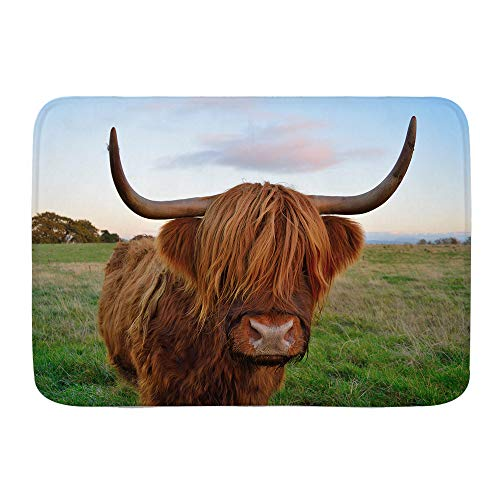 NUXIANY Zerbini Tappeti da Bagno Tappetino da Esterno,Mucca del Bestiame dell'altopiano,Tappeto da...