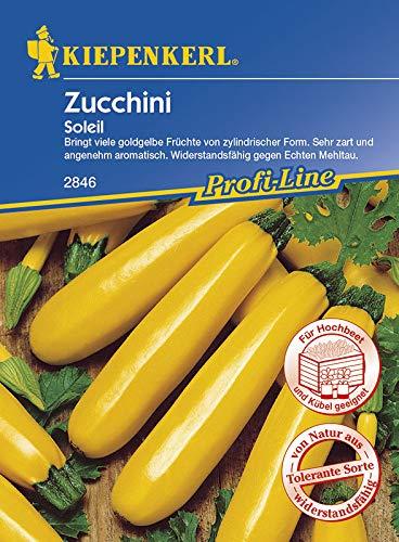 Zucchini Soleil