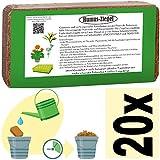 Torf Ersatz 10 x 650g = 90 L Kokoserde Blumenerde ungedüngt & torffrei - Pflanzerde für Obst, Gemüse, Zierpflanzen und Exoten