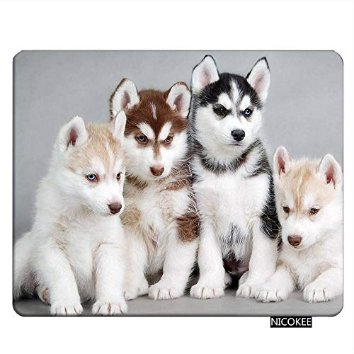 Nicokee Dogs Gaming Mousepad Husky Puppies Dogs Mouse Pad Rectangle Mouse Mat for Computer Desk Laptop Office 9.5 X 7.9 Inch Non-Slip Rubber