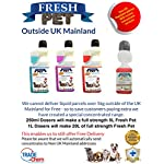 Trade Chemicals FRESH PET ECO Refill to make 4x5L Kennel, Cattery, Pet Disinfectant, Cleaner (TROPICAL PACK) 10