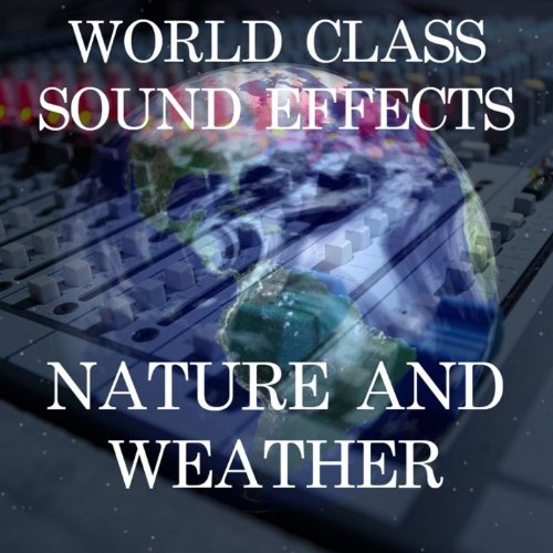 Rain Interior Plastic Roof Pours Weather Sound Effects Sound Effect Sounds EFX Sfx FX Nature and Weather Rain and Storm [Clean]