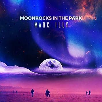 Moonrocks in the Park