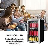 Klarstein Beersafe - Getränke-Kühlschrank mit Edelstahl-Front, Glastür, Mini-Kühlschrank, Energieeffizienzklasse:, 0 bis 10 °C, wechselbarer Türanschlag, 98 L, schwarz-silber - 8