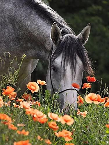 diamond painting horse Sugamm 5D Kit per Diamond Painting Horse Flower Kit Completo Drill