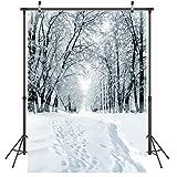 LYWYGG 5x7FT Fondo de Nieve Fondo de Copo de Nieve Fondo de Fotografía Fondo de Invierno Cubierto de Nieve Fondo de Navidad Fondo de Foto de Casa Estudio Fotografía Props CP-285