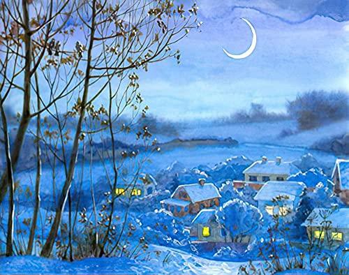 LKAZLL Pintura al óleo por número Kits DIY Adultos Lienzo Decoración del Hogar Regalos Únicos Invierno Pueblo Noche 40x50 cm