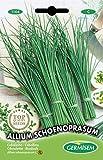 Germisem Allium Schoenoprasum Semillas de Cebollino 2 g