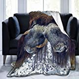 Fleece Blanket 50' x 60' Musk Ox Alaska USA Horns Wool Snow Home Flannel Fleece Soft Warm Plush Throw Blanket for Bed/Couch/Sofa/Office/Camping