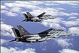 F-14 Tomcat VF-103 Pair in Flight 8x12 Silver Halide Photo Print