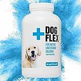 Flex Dog Gelenktabletten