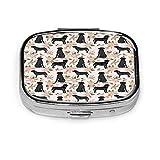 Caja de pastillas de plata rectangular personalizada, estuche organizador de bolsillo para tableta, estuche organizador para monedero, labrador negro, perro D