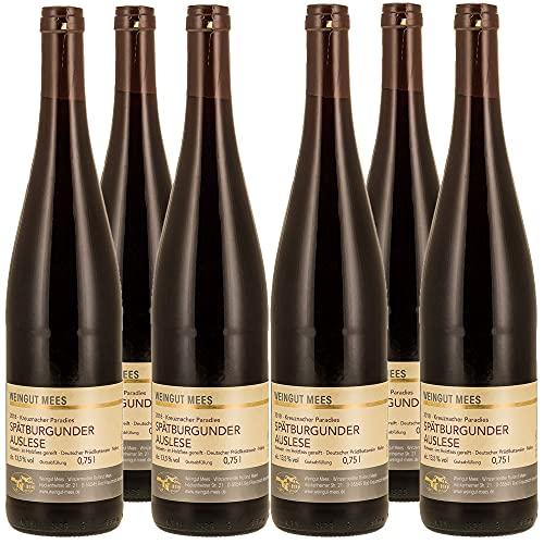 Weingut Mees SPÄTBURGUNDER ROTWEIN AUSLESE TROCKEN 2018 KREUZNACHER PARADIES Prämiert Wein Deutschland Nahe Paket (6 x 750 ml) 100% Blauer Spätburgunder
